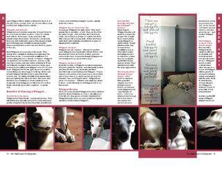 TheGulfCoastDOGSummer2009 (2)_Page_2