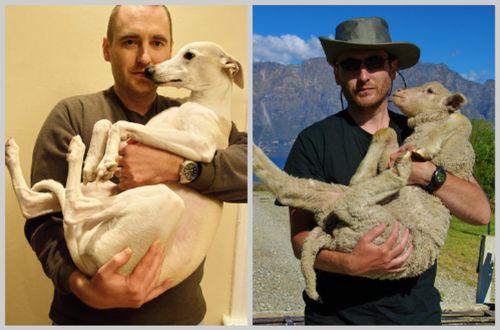 Ribsy-lamb